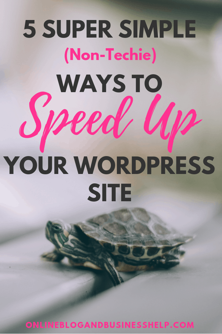 """Turtle below the text """"5 Super Simple Non Techie Ways to Speed Up Your WordPress Site"""""""