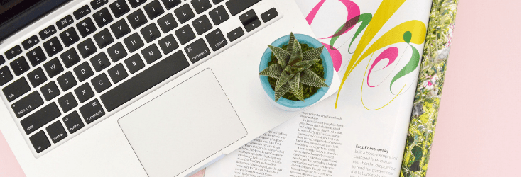Laptop Computer and spiky plant